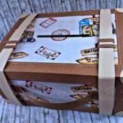 valigia porta soldi